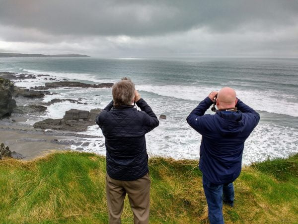 Guests exploring Ireland's Wild South Coast with an Ireland's Wildlife Guide